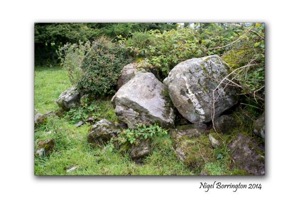 Kilkenny court tombs 9