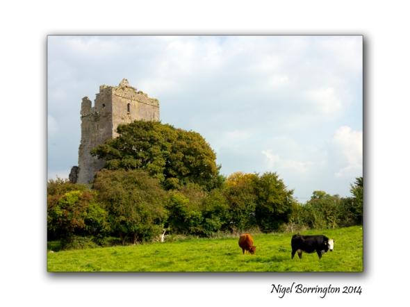 Barrackquarter county Kilkenny 3