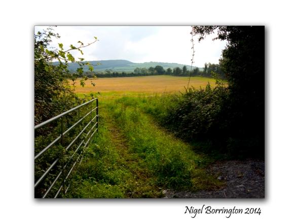 Barrackquarter county Kilkenny 4