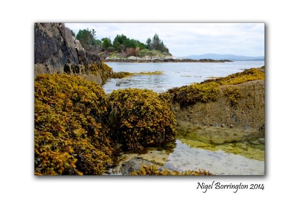 Coolieragh Glengarriff 2