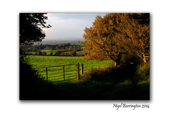 September Kilkenny Landscape 1