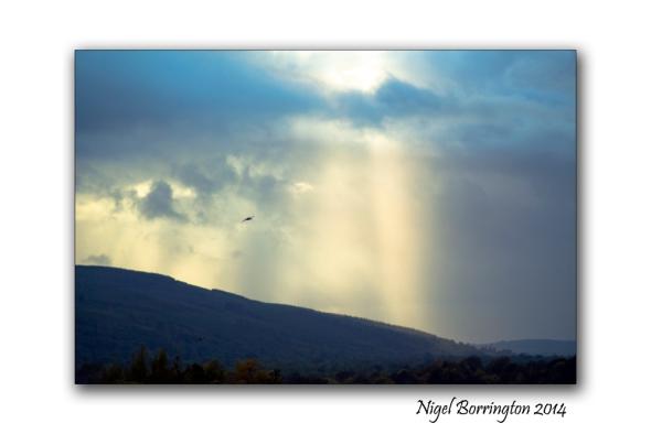 A September Landscape, County Kilkenny, Irish Landscape Photography : Nigel Borrington