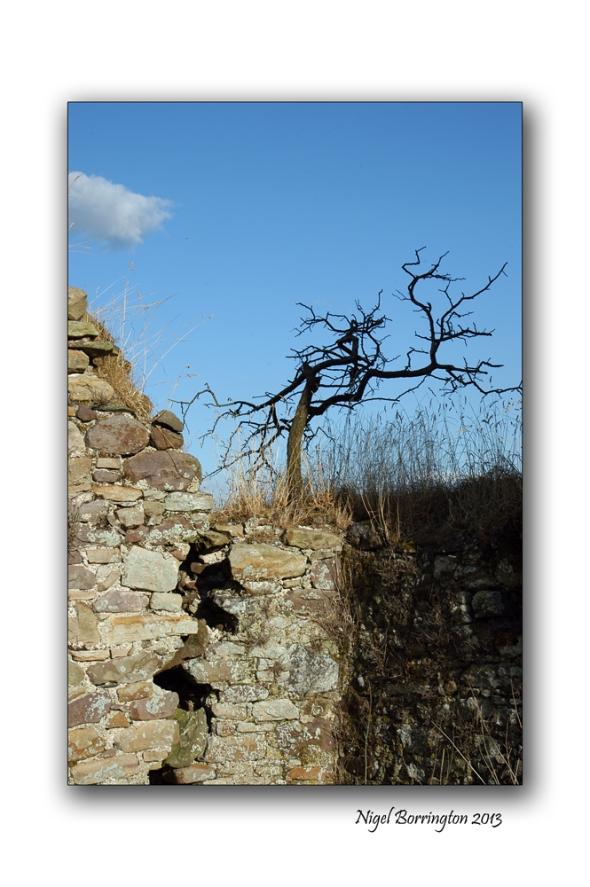 Kilkash castle 7