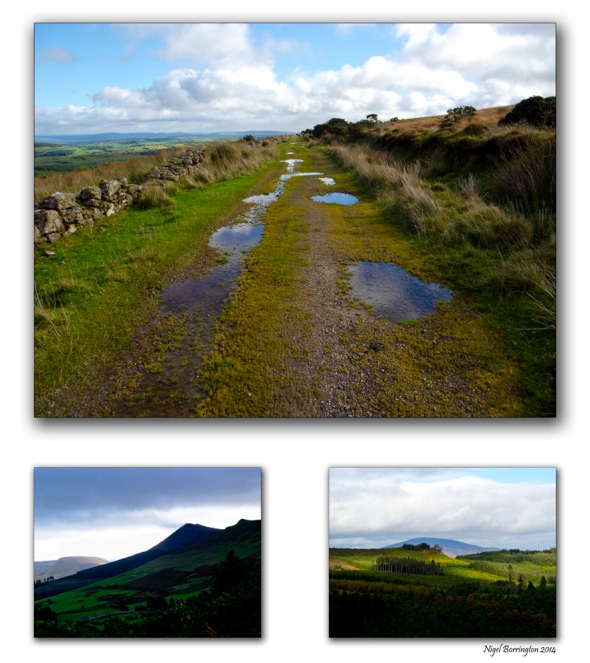 The mountain Lane, GlenPatrick , County Waterford, Irish Landscape Photography : Nigel Borrington