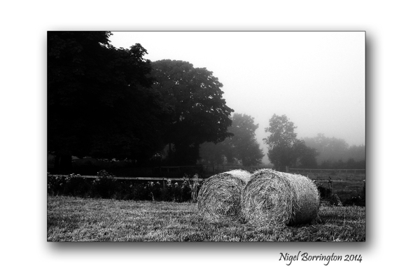 Harvest time. October 2014 Irish Landscape Photography : Nigel Borrington
