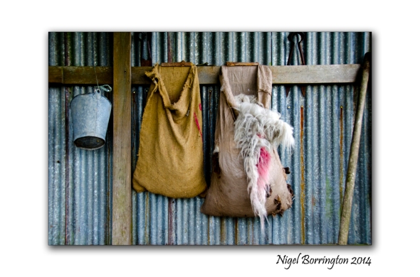 The Sheep Shearing Shed, Country Kerry, Irish Photography : Nigel Borrington