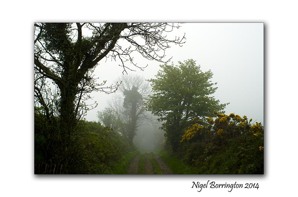 A Rainy morning on the lanes. Kilkenny Landscape Photography : Nigel Borrington
