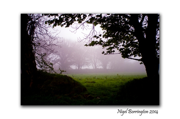 A Misty Day 3