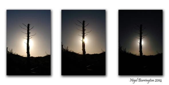 A November sunrise