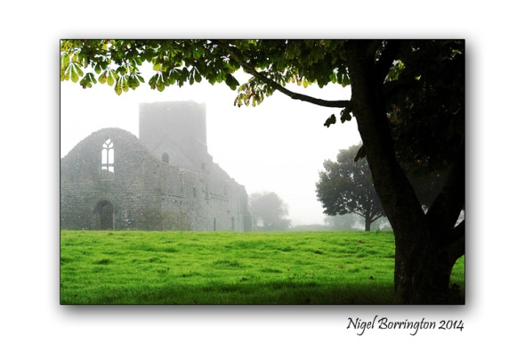 The Mornings Foggy Dew Callan, County Kilkenny Irish Landscape Photogaphy : Nigel Borrington