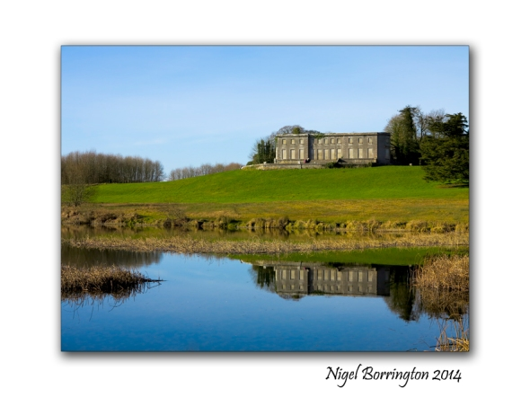 Curraghchase Forest Park, Ireland Landscape photography : Nigel Borrington