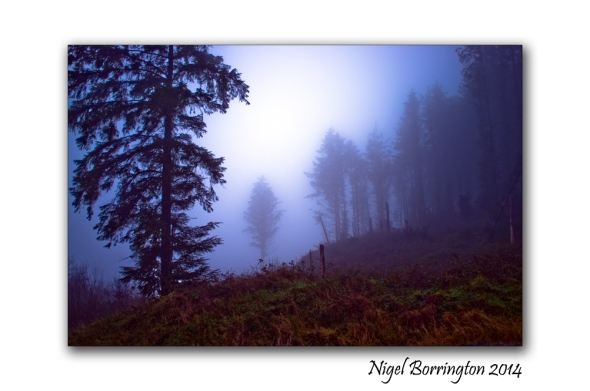 A Winters Day in December 2014 County Kilkenny Landscape photography : Nigel Borrington