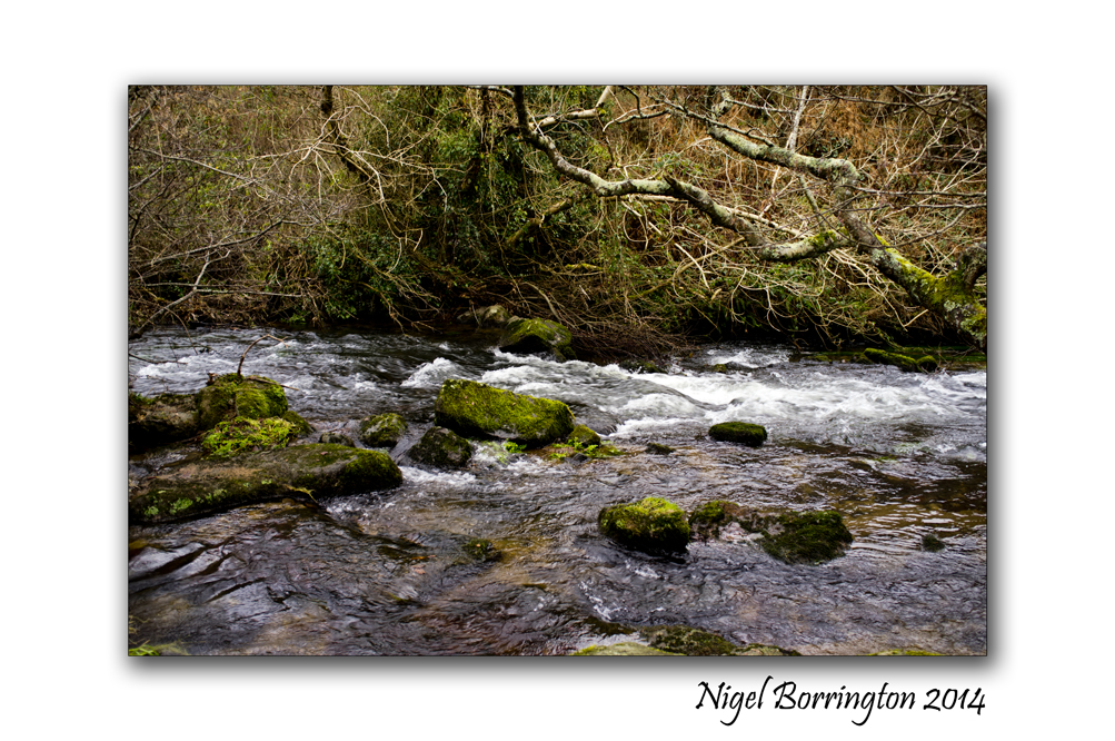 Kilkenny Rivers in December 04