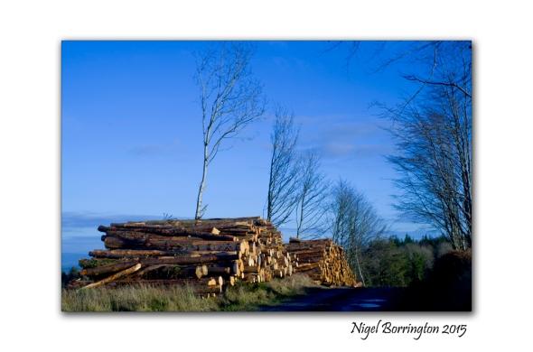 County Kilkenny Landscape Photography 2015 2