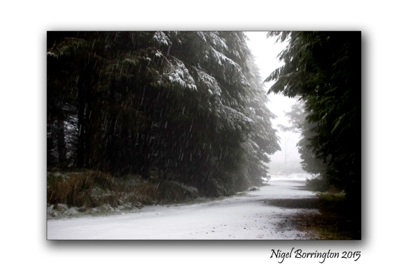 The first of the Winters snow 2015 Landscape Photography : Nigel Borrington