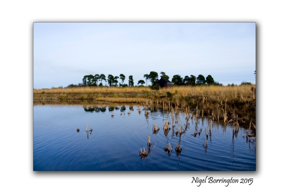 Littleton bog Tipperary 02
