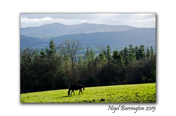 The Freedom of the hills Irish Landscape Photography : Nigel Borrington