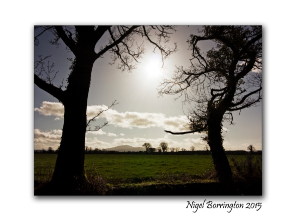 Last night as I was sleeping Kilkenny Landscapes :  Nigel Borrington