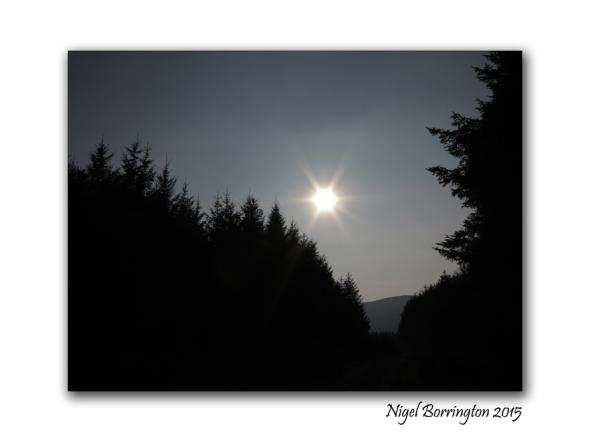 Morning Star 2