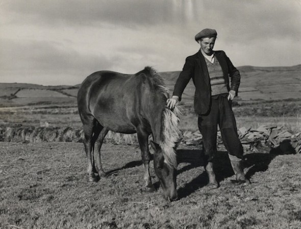 Dorothea Lange Michael Kenneally on His 30 Acres [Ireland]