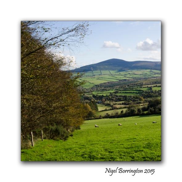 Kilkenny Landscape Images 03