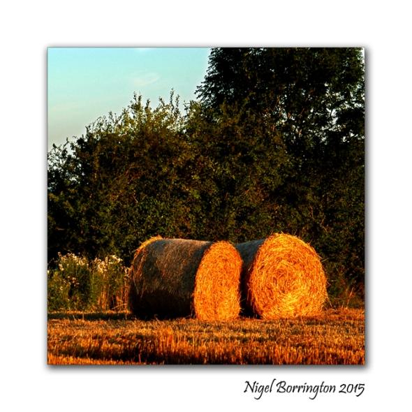 Kilkenny Landscape Images 04