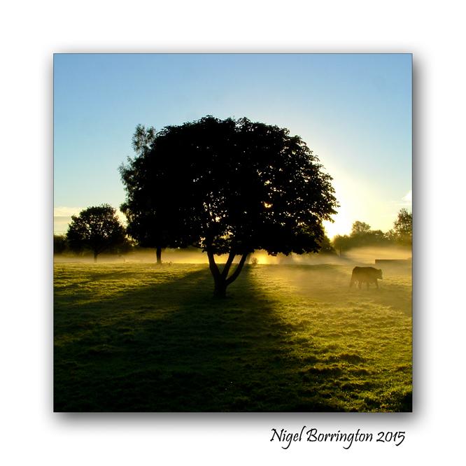 Kilkenny Landscape Images Nigel Borrington