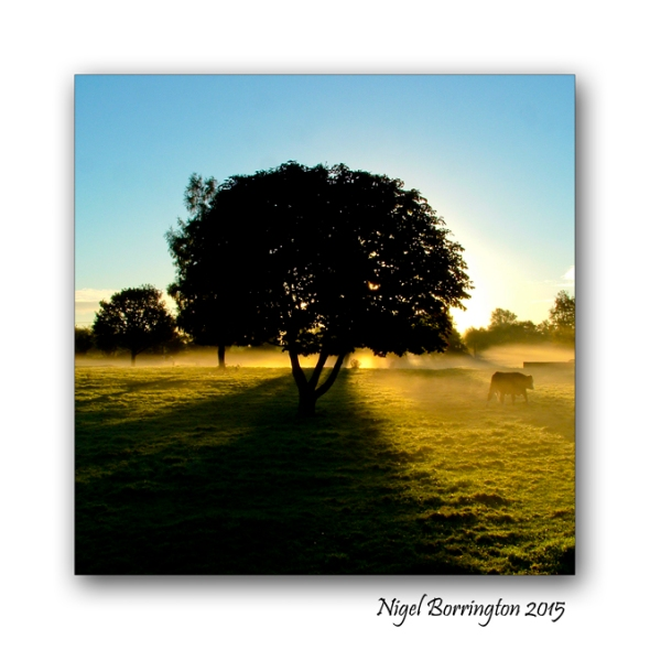 Kilkenny Landscape Images Nigel Borrington