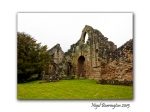 lilleshall abbey 05