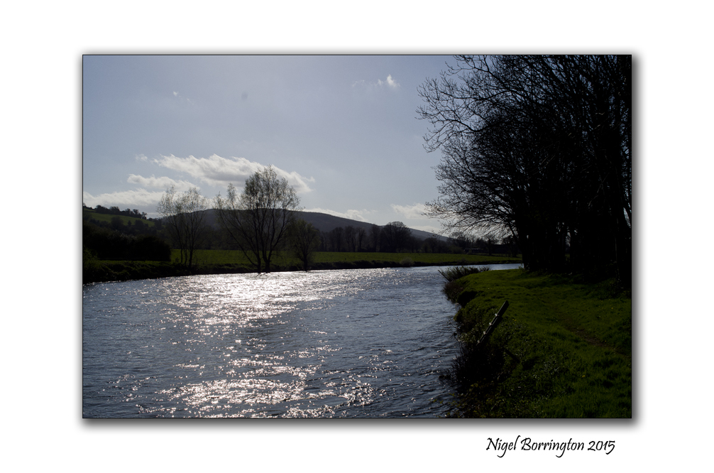 River of life, River Suir Clonmel , Ireland Landscape Photography : Nigel Borrington