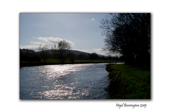 River of life, River Suir Clonmel , Ireland Landscape Photography : Nigel Borrington