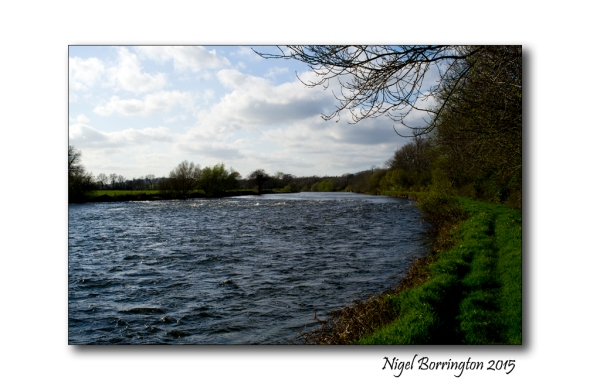 The River Suir, County Tipperary Irish Landscape Photography : Nigel Borrington