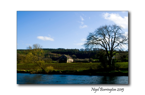 River Suir Tipperary 02