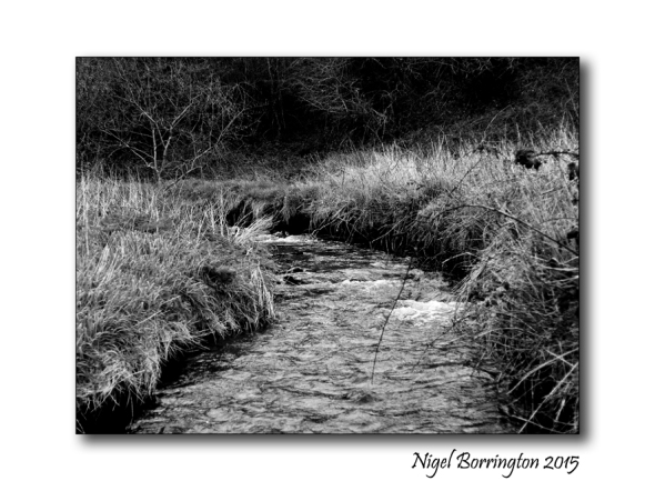I walk along a river Landscape Photography : Nigel Borrington