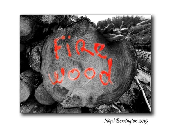 firewood 01