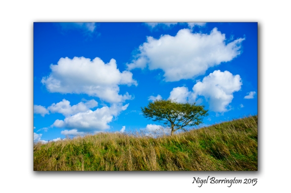 Irish Landscape KIlkenny_01