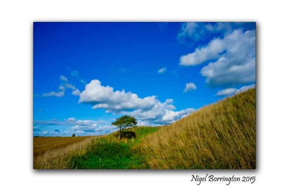 Irish Landscape KIlkenny_02
