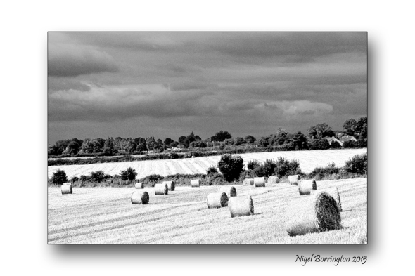 Kilkenny landscape images  August in black and white 2