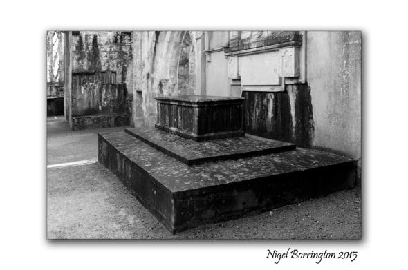 Muckross Abbey 03