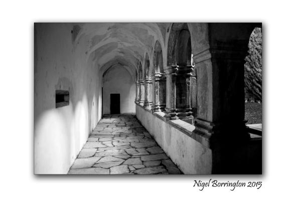 Muckross Abbey 06
