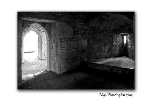Muckross Abbey 07