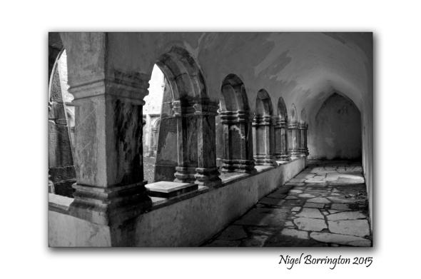 Muckross Abbey 08