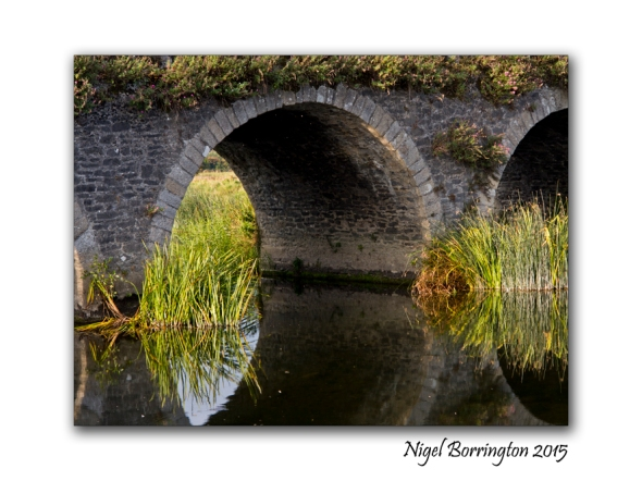 Autumn on river the Barrow Kilkenny Nigel Borrington
