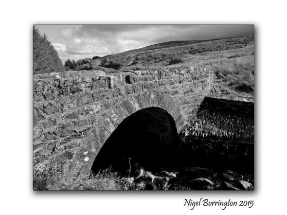 The Bridge Builder  Irish Landscapes Nigel Borrington