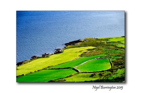 The Bright Field' by R. S. Thomas Landscape Photography : Nigel Borrington