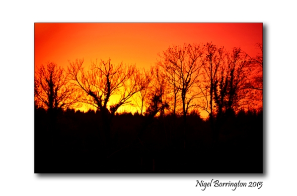 December Sunset Kilkenny landscape Photography 1