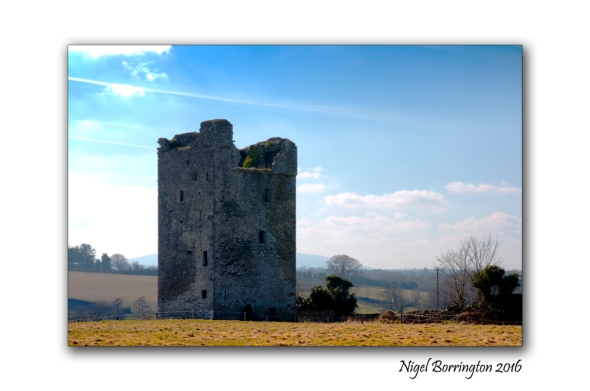 Tower House Kells, County Kilkenny Nigel Borrington
