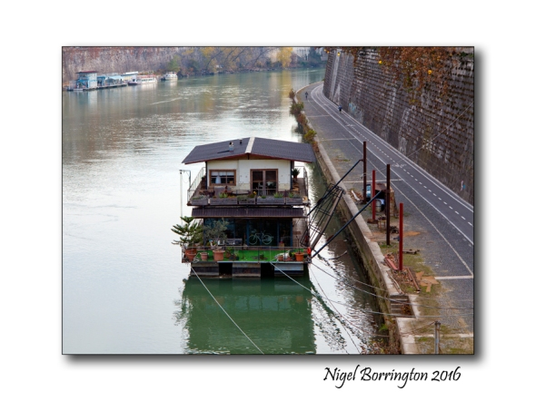 Life along the river bank River Tiber Rome Nigel Borrington