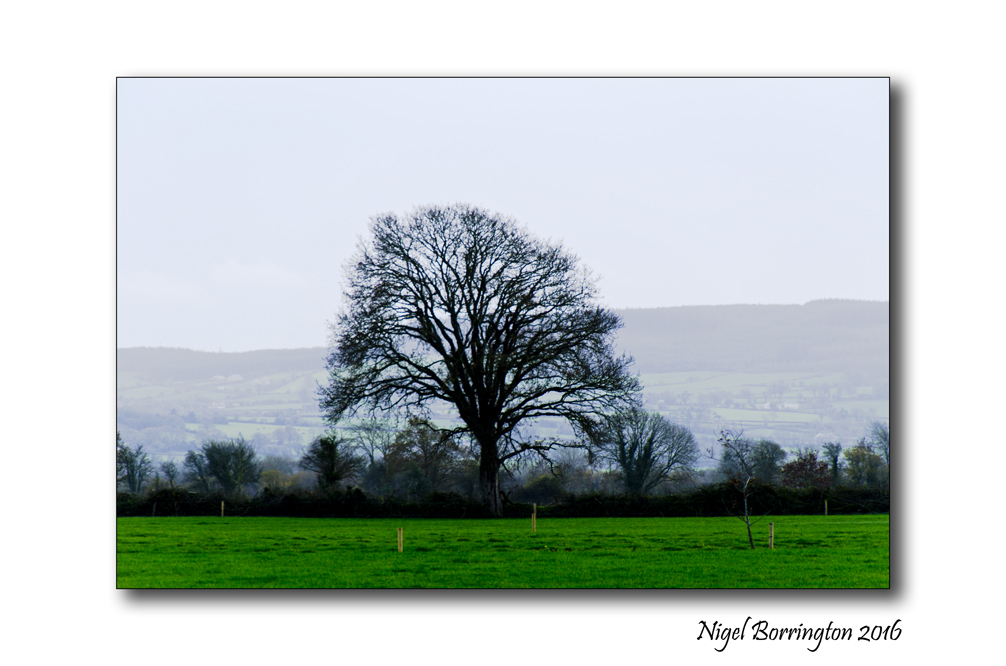 County Kilkenny by Cycle 03