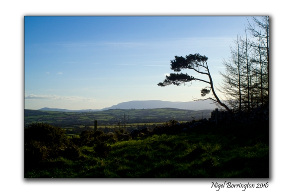 Irish Kilkenny Landscape Photography evening light Nigel Borrington 02